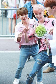 jinho and hui