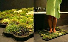 Moss shower mat that lives off the water that drips of you when you get out.