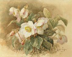 Paul de Longpré 1855–1911 Francia  Es esta la tercera de las entradas del blog dedicada a las acuarelas de flores. Remito a las dos ...