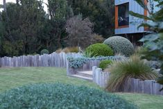 This sculptured garden at Flinders is offset from the house the main views are from the first storey designed by Fiona Brockhoff. Australian Garden Design, Australian Native Garden, Contemporary Garden Design, House Landscape, Garden Landscape Design, Backyard Garden Design, Backyard Ideas, Backyard Beach, Rooftop Garden