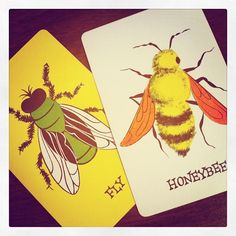 Vintage Insect Playing Cards.  Now these I would get if I saw them!
