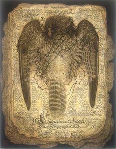 鳥の福音書 (gospel of birds?) by Masaaki Sasamoto