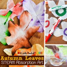 Autumn Leaves STEAM Absorption Art for Kids to Enjoy this Fall: Kids can watch coffee filters magically change colors as they learn about leaves (Preschool, Kindergarten, First grade, Botany, Kids Craft) Apple Activities, Steam Activities, Autumn Activities, Preschool Activities, Preschool Kindergarten, Autumn Art, Autumn Leaves, Art For Kids, Crafts For Kids
