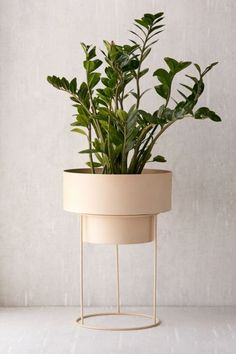 """Noa 12"""" Metal Planter + Stand 