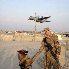 German Shepherd Military War K9 & Handler - God Bless you both!