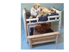 Luxury Log Dog Beds and Other Log Furniture - Custom Crafted Pet Feeders