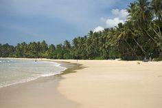 Les plus belles plages du Sri Lanka | Lonely Planet