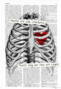 Hearts are wild creatures; that's why our ribs are cages.