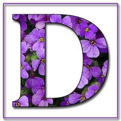the letter d in purple - Google Search