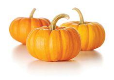 pumpkin / ฟักทอง