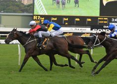Gai Waterhouse had to wait until the last day of The Championship to get a carnival Group 1 and it was the filly English (Aus) (Encosta de Lago {Aus}) that provided such a result in …