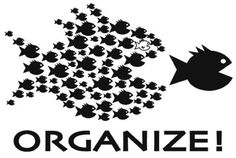 organize union meme fish - Google Search