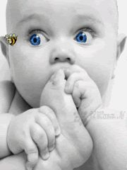 Tracking a Bee (gif) Baby Pictures, Baby Photos, Cute Pictures, Funny Photos, Beautiful Pictures, Gif Animé, Animated Gif, Beautiful Children, Beautiful Babies