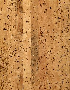 There are many reasons to consider eco cork flooring for your home. Cork floors are easy to clean, add insulation value to your floor, are naturally moisture resistant and sustainable Eco Friendly Flooring, Cork Flooring, Oak Tree, Wood Texture, Tile Floor, Hardwood, Bamboo, Glass, Inspiration