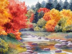 Autumn Glory Painting by Janet  Zeh
