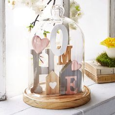 Decorative items - Glass bell home in pink and gray. Wooden Crafts, Diy And Crafts, Arts And Crafts, Diy Wall Decor, Diy Home Decor, Cloche Decor, Light Bulb Art, Rose In A Glass, Box Frame Art