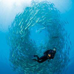 Wishing I was scuba diving in Tulamben, Bali today.