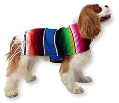 Anxiety Wraps For Dogs - Handmade Dog Poncho From Authentic Mexican Blanket. Dog Apparel with Adjustable Neck and Chest. Dog Clothes for Small and Medium Size Dogs. Pets Clothes - Puppy Clothes - Premium Quality Dogs Clothes By K9 Ponchos. (Fringed Edge, Medium) - http://www.thepuppy.org/anxiety-wraps-for-dogs-handmade-dog-poncho-from-authentic-mexican-blanket-dog-apparel-with-adjustable-neck-and-chest-dog-clothes-for-small-and-medium-size-dogs-pets-clothes-puppy-clothes-prem