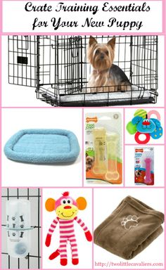 New Puppy Crate Training Essentials For #CrateHappyPets #sponsored