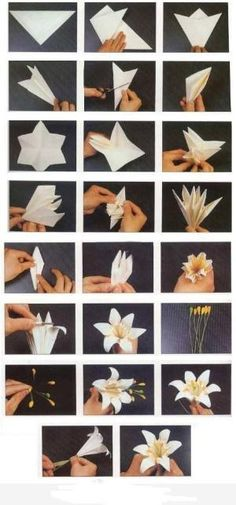 How to fold origami paper craft blooming lily flowers step by step DIY tutorial instructions, How to, how to make, step by step, picture tutorials, diy instructions, craft, do it yourself by lenore