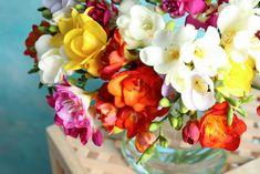 Pom Pom Flowers, Ranunculus Flowers, Bright Flowers, White Flowers, Lavender Roses, Pink Roses, Spring Blooms, Spring Flowers, Pansies