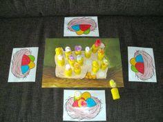 Het is een soort memorie. De kinderen kiezen een kleur. De kinderen draaien dan een kipje om, wanneer ze het kleur hebben dat ze hebben gekozen mogen ze het op hun nestje zetten.