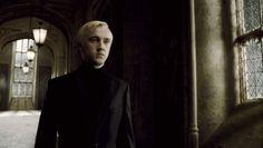Draco Hallway (6)