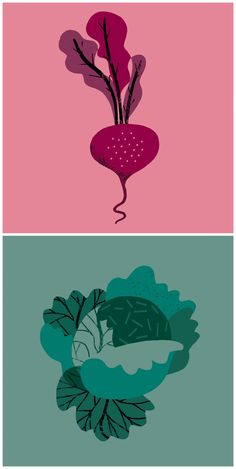 Vegetable illustrations by Nanna Prieler