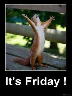 Yes!!! It's Friday!!!