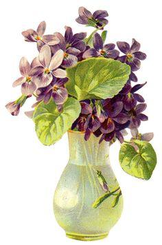 violets @@@@@.....http://www.pinterest.com/susanakers/paper-victorian-scrap/
