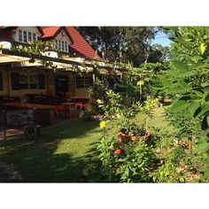 SunSpace Cafe - Doonan - Complete with onsite Farm and lovely staff <3