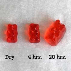 When you soak gummy bears in vodka, they absorb the alcohol, get bigger, and turn into yummy fruity Vodka Gummy Bears. With this method, you can do it in just a few hours instead of the usual week in the fridge. Alcohol Gummy Bears, Drunken Gummy Bears, Best Gummy Bears, Fruity Alcohol Drinks, Alcohol Drink Recipes, Vodka Drinks, Party Drinks, Fun Drinks, Yummy Drinks