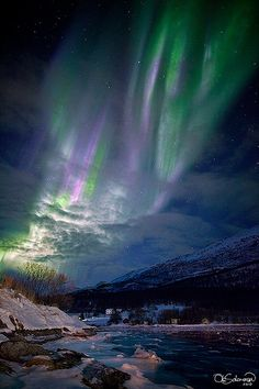 ✯ A beautiful aurora shines through snow  and clouds to create a vibrant burst of color