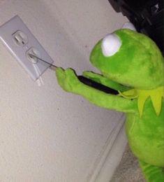 """""""kermit memes - A Thread"""" Tumblr Posts, Reaction Pictures, Funny Pictures, Dankest Memes, Funny Memes, Bad Memes, Kermit The Frog, Kermit Face, Funny Posts"""