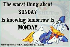 Sunday Quotes Funny, Monday Quotes, Funny Quotes, Day And Night Quotes, Weekend Quotes, Work Memes, Work Humor, Sunday Pictures, Tomorrow Is Monday