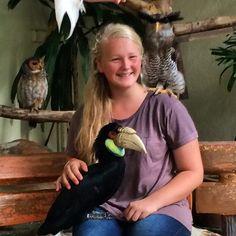 @tashfrost__ loves birds, especially the owl! #upsticksandgo #birds #birdsoftheworld #travellingwithkids #travellingtheworld #travelgram #KL #kualalumpurbirdpark #kualalumpur #malaysia #owl #hornbill | Flickr - Photo Sharing!