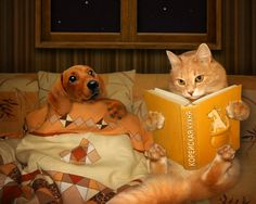 Read it again.it's my favorite - Cat memes - kitty cat humor funny joke gato chat captions feline laugh photo Funny Cats, Funny Animals, Cute Animals, Stupid Funny, Funny Dachshund, Animal Pictures, Funny Pictures, Amazing Pictures, Bedtime Stories