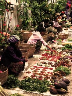 Every morning at sunrise, the alleys of Luang Prabang Laos are filled with vendors selling their goods. Local greens & tiny Laos eggplants & curly green vegetables, are just a few of the many items they offer!