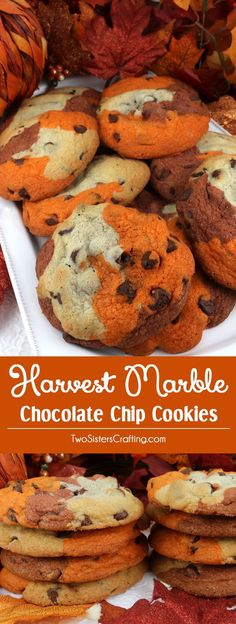 Harvest Marble Chocolate Chip Cookies - a classic cookie all dressed up for Fall and Thanksgiving.  This unique and tasty Thanksgiving cookie would be great Thanksgiving dessert idea for a potluck dinner, a fall bake sale or a Christmas Cookie exchange. Pin this delicious marble cookie recipe for later and follow us for more great Thanksgiving Food ideas.