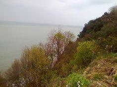 sap ya da saman: köy, doğa, deniz, Yanbolu, Karadeniz