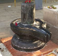 விருட்ச பீடம் : பூரம் நட்சத்திரம் - விருட்சம் - பரிகாரம் Chola Temples, Occult Science, Lord Shiva, Fountain, Outdoor Decor, Meditation, Faith, Wallpapers, Water Fountains