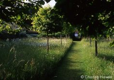 North Garden – Elizabeth's Walk, Meadow and Orchard. Would be nice to have something like this in the backyard.