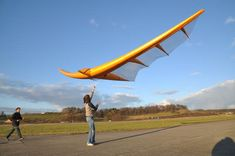 The 5-ft-pack HG Movement - Hang Gliding Org - Worlds largest Hang Gliding community, discover Hang Gliding