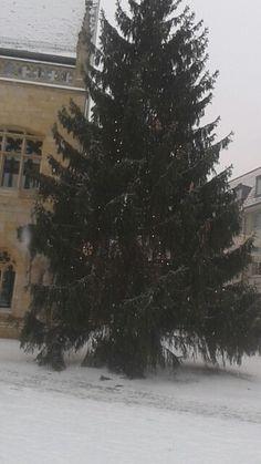 Endlich Schnee in HBS