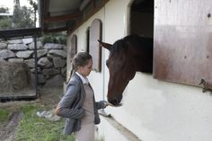 Equitazione una scuola di vita o uno sport ?L'Equitazione più che uno sport è una disciplina, un modo di essere e di vivere.Nell'ultimo periodo mi è stato chiesto da più persone il perché amassi i cavalli e cosa mi affascina di questa così antica disciplina.