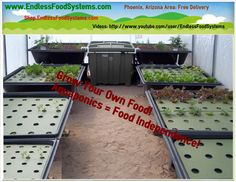 1000 images about desert greenhouse on pinterest for Arizona aquaponics
