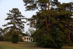 GOVERNOR'S PARK: Mature pines frame the home on the crest of the hill. Tallahassee, FL.