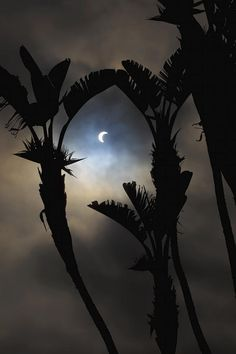 Solar eclipse and dramatic clouds - Los Angeles, CA