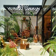 Quinchos balcones y terrazas modernos de comercial dominguez moderno   homify Plants, Outer Space, Balconies, Decks, Interior Design, Trendy Tree, Plant, Planting, Planets