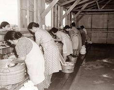 California 1942 public wash room - early precursor to the laundromat